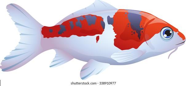 cartoon vector illustration of a fish koi