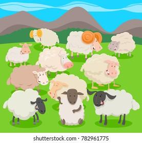 Cartoon Vector Illustration of Flock of Sheep Farm Animal Characters