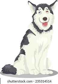 Cartoon Vector Illustration of Funny Siberian Husky or Alaskan Malamute Purebred Dog