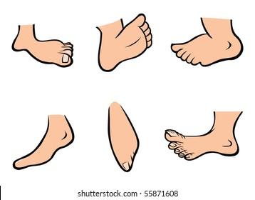 cartoon vector illustration human feet