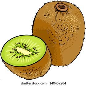 Cartoon Vector Illustration of Kiwi Fruit Food Object