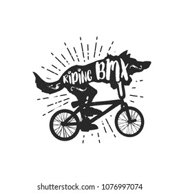Cartoon vector illustration - Wolf riding bicycle bmx
