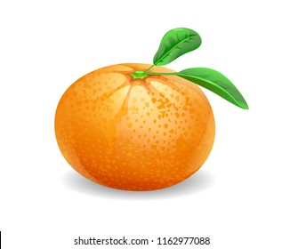 cartoon vector of a mandarin orange