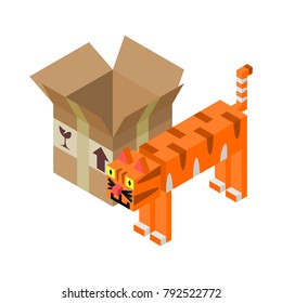 Cartoon vector of an orange tabby cat with stripes standing beside a cardboard box on white background in axonometric style