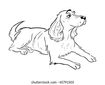cartoon vector outline illustration Spaniel dog resting