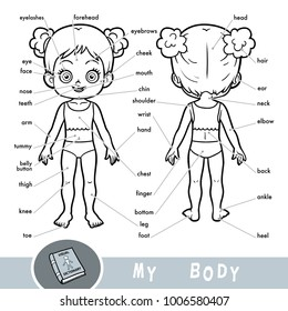 My body diagram images stock photos vectors shutterstock cartoon visual dictionary for children about the human body my body parts for a girl ccuart Images