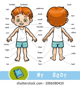 Ilustraciones, imágenes y vectores de stock sobre Body Parts English