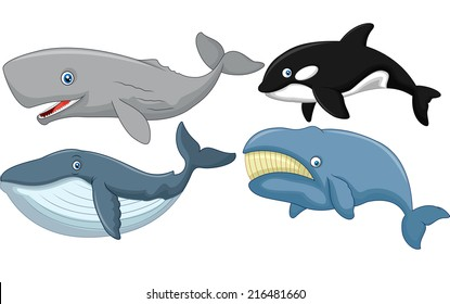 Whale Cartoon Images, Stock Photos & Vectors | Shutterstock