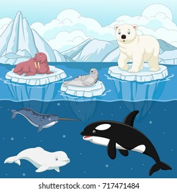 Cartoon wild arctic animal on north pole