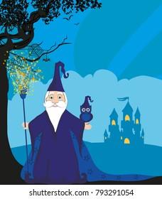 Cartoon Wizard with owl