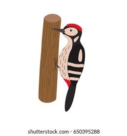 Cartoon woodpecker on a tree