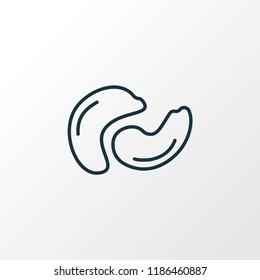 Cashew icon line symbol. Premium quality isolated nutrition element in trendy style.