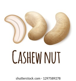 Cashew nut icon. Realistic illustration of cashew nut vector icon for web design isolated on white background