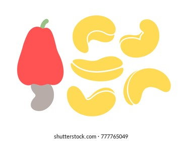 Cashew nut. Isolated  nut on white background. EPS 10. Vector illustration
