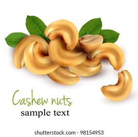 Cashew nuts. Vector illustration.