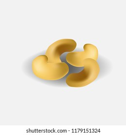 Cashew nuts vector illustration in realism style with shadow on transparent background