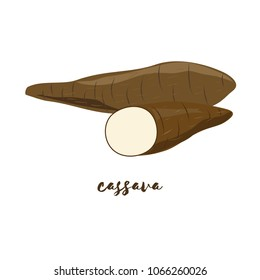 Cassava. Flat design. Vector illustration. Ripe vegetable for Your ideas.