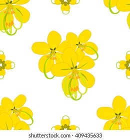Cassia Fistula - Gloden Shower Flower Vector Illustration