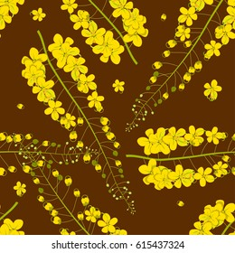 Cassia Fistula - Golden Shower Flower on Brown Background. Vector Illustration