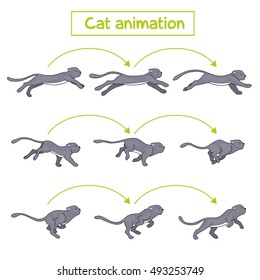 Cat animation. Cat runs and jumps