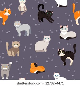 Cat background, seamless pattern. Vector flat illustration. Kitty, Pets. Exotic and ordinary cats. Cartoon.