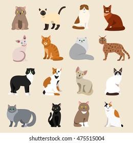 Cat breeds cute pet animal set vector illustration
