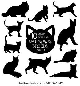 Cat breeds set. Cats icons. Cat breeds silhouette. Most popular cat breeds, part 2.