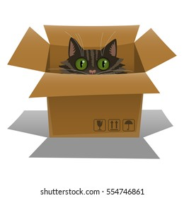 Cat in a cardboard box. Kitten is looking out of a box. Vector illustration