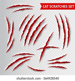 Cat claws scratches on transparent background realistic vector illustration