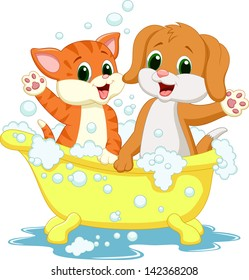 Cat and dog bathing