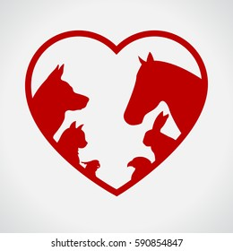 Cat and Dog. Horse and rabbit. Vet. Red
