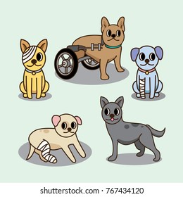 cat and dog injured character cute cartoon set. for animal hospital and animal help care.