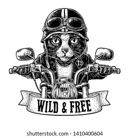 Cat dressed in the helmet and glasses driving a motorcycle rides. Vector hand drawn vintage engraving. Isolated on white background. For poster and t-shirt biker club. WILD & FREE lettering.
