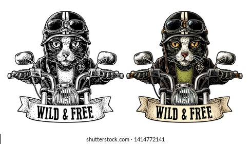 Cat dressed in the helmet and glasses driving a motorcycle rides. Vector hand drawn color vintage engraving. Isolated on white background. For poster and t-shirt biker club. WILD FREE lettering.