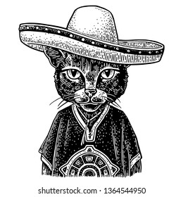 Cat dressed in the poncho, sombrero. Vintage black engraving illustration. Isolated on white background. Hand drawn design element for poster