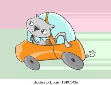 A cat driving a car