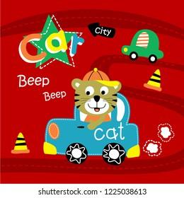 cat driving a car funny animal cartoon,vector illustration