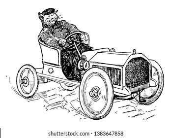 Cat Driving, this scene shows a cat driving a car, vintage line drawing or engraving illustration