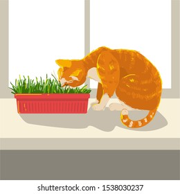 Cat eating grass sitting on a window on a windowsill at home. Red color kitten. concept sunny hand drawing style vector illustration.