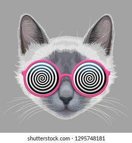 Cat face and glamorous eyeglasses with hypnotic spiral patterns instead of glasses