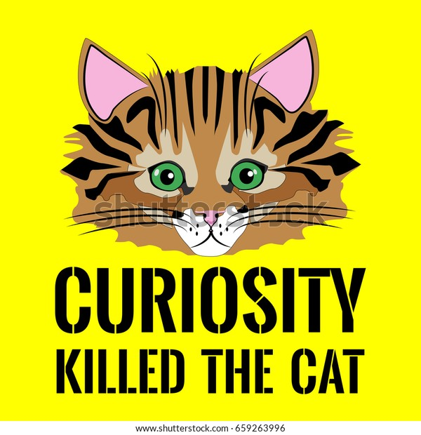 Cat Face Proverb Curiosity Killed Cat | Royalty Free Stock Image