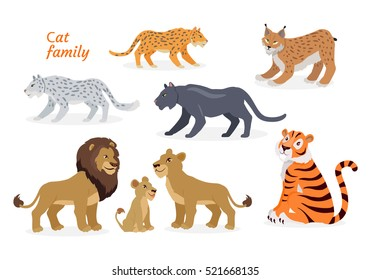 Cat family. Felidae family of cats. Felids. Pantherinae comprising tiger, lion, jaguar, leopard, snow leopard, ounce and clouded leopards. Lion family. Big wild cats. Flat style Vector illustration