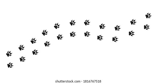 Cat footpath. Cat or lion paw trace. Animal footprints path.