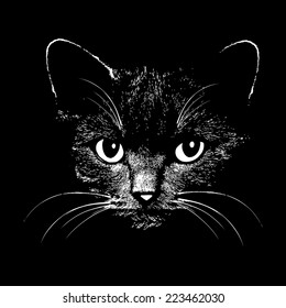 Cat head graphic design vector animal illustration for t-shirt. Sketch tattoo design.