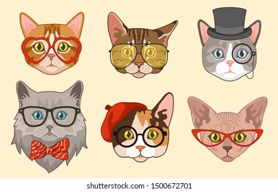 Cat heads. Cute funny cats avatar muzzles with accessories, glasses and hats, bow tie. Happy hipster pets vector drawing modern animal isolated characters
