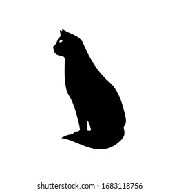 Cat icon vector on white background