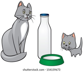 Cat and kitten are looking to milk in the bottle and plate