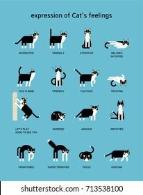 cat language vector illustration flat design