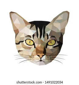 Cat low poly design. Polygonal art style. Modern geometric graphic. Triangle vector illustration.