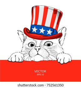 A cat in old American hat with a flag. National Symbols of the USA. Vector illustration